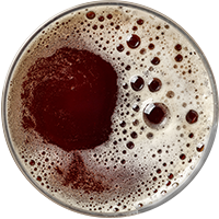 http://wintonbrewery.com/wp-content/uploads/2017/05/beer_transparent_02.png